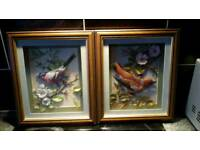 Bullfinch and Hawfinch framed 3D pictures