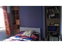 Double Room in Gorgeous Montpelier House