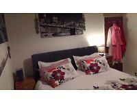 Rooms for rent £300 per person, per room