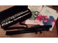 Flute, Beginners, Ideal first flute