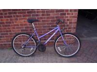Girl or ladies cycle