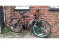 Adult bicycle only 3 weeks old. bought for £150