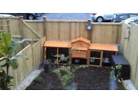 Chicken house suitable for upto 6 chickens