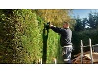 Gardening landscaping services