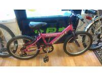 "Probike Crystal pink 20"" Wheel, 5 speed grip shift gears, working order"
