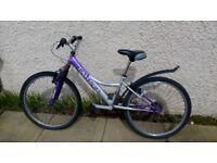 Cheap lady bike