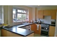 Housemate wanted for flatshare
