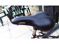 Stunning, nearly new, Raleigh Caprice ladies bike