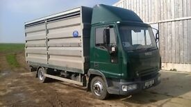 2006 IVECO 75E17, 7.5T, CATTLE LORRY WITH LIFT OUT SHEEP DECKS, VERY TIDY