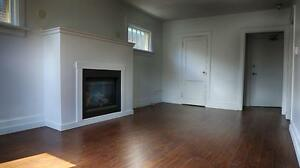Spacious 1 Bedroom at 64 Weber St. in Kitchener - CALL TODAY! Kitchener / Waterloo Kitchener Area image 9