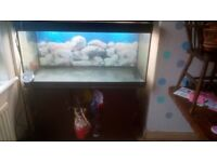 Juwel 4ft fish tank and stand with lights
