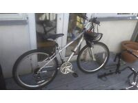 Raleigh Voyager Silver Bike and accessories