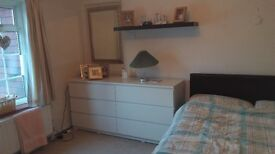 Double room for one in a gorgeous Wrecclesham houseshare with mixed gender older persons