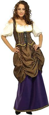 Pirate Wench Lady Maiden Renaissance Princess Dress Up Halloween Adult Costume](Adult Princess Dress Up)