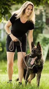 BECOME A CERTIFIED DOG TRAINER