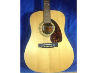 ADMIRA ACOUSTIC GUITAR VERY NICE CONDITION LOW ACTION PRO SETUP