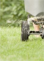Lawn care, Mowing, and MORE! *Book now for discounts in 2019*