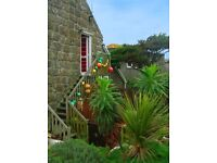 Sennen, Lands End 25-30th June £ 200.00 Sleeps 4
