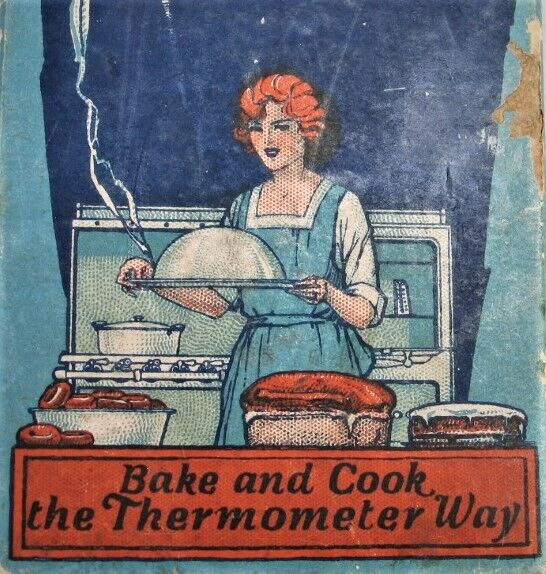 Taylor Vintage Oven Thermometer in Box