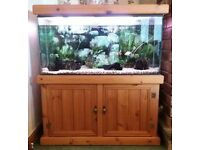 LARGE ANTIQUE PINE FISH TANK WITH LOTS OF EXTRAS