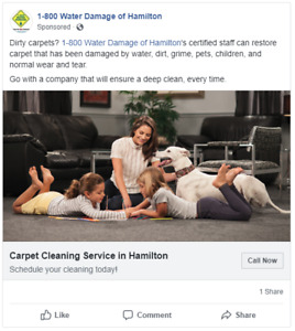 Carpet Cleaning Special 3 Rooms $99