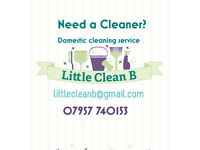 Need a cleaner?