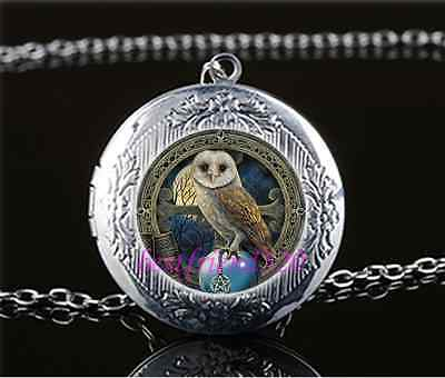 Wicca Owl Photo Cabochon Glass Tibet Silver Chain Locket Pendant Necklace - Owl Photo