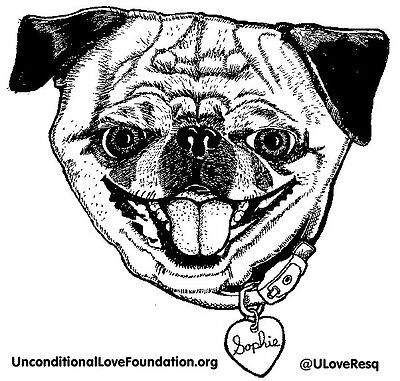 Unconditional Love Foundation