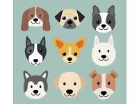 K-9 Kare: Dog Day-Care *50% OFF*