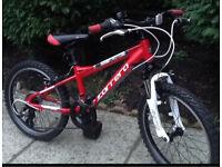 Carrera Blast Bike