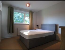 Large double room in Farnborough in modern large flat