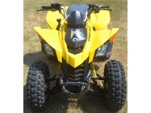 Can am 250 Plastics wanted