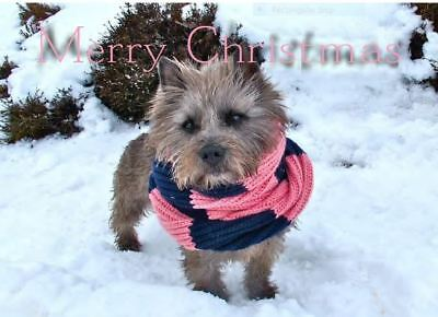 """CAIRN TERRIER DOG RESCUE Cairn Terrier Christmas Card Packs X 12 All are 6"""" x 4"""""""