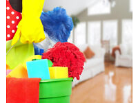 Regular Domestic Cleaning One-Off End of Tenancy Cleaning