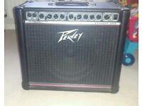 Peavey Envoy 110 40w Guitar Amp