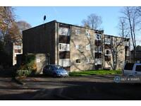 Studio flat in Endcliffe Vale Road, Sheffield , S10