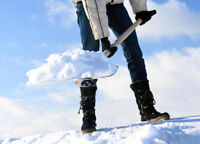 Wanted: snow cleaning and yard care ?