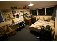 Double room for rent to a friendly student