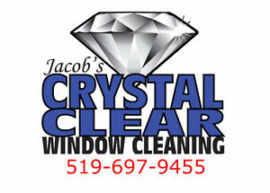 Eavestrough Cleaning/Fall Clean-ups! London Ontario image 2