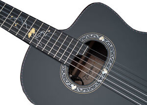 2012 LTD 'MICHI' by Takamine ( classical guitar ) NEW PRICE !