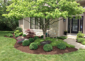 Wanted Any Landscaping , Planting, Sodding, Maintenance jobs!