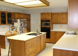Whole Kitchen - Cabinets, Counters, Stove Top, oven, sink, light