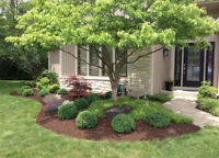 Grass Cutting, Gardening and Landscaping