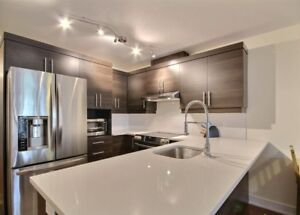 2 Bedroom Fully Furnished Condo (5-10 mins from Downtown)
