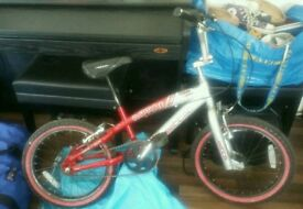 Boys or Girls Bike