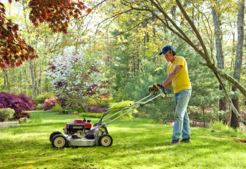 How to Buy a Used Lawnmower
