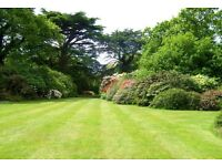 GRASS CUTTING,GARDEN MAINTENANCE ,GARDEN SERVICES,HEDGES TRIMMED ETC