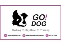 Go!Dog Walking :: Day Care :: Training :: Home from Home Boarding