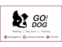 Dog Day Care :: Training :: Home from Home Boarding :: Dog Walking