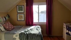BEDROOMS AVAILABLE MAY 2017 * RIGHT ACROSS FROM LAURIER ENTRANCE